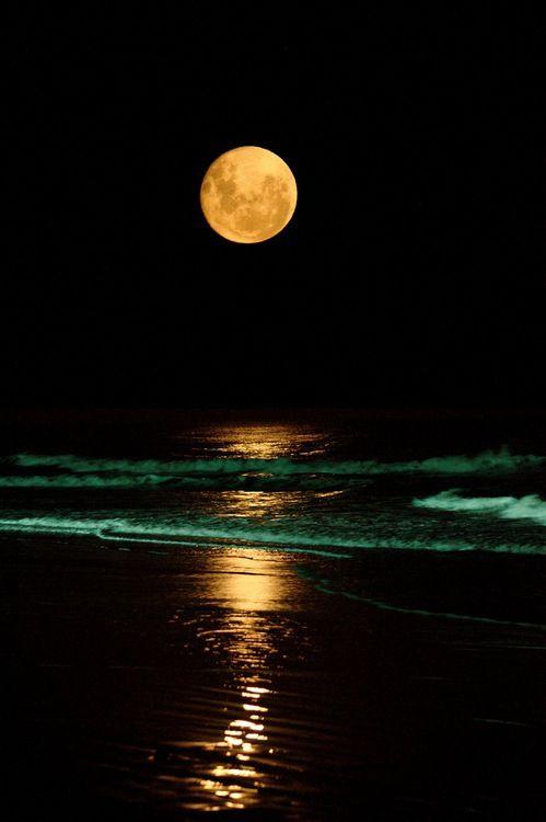 senderismo nocturno y baño en la playa